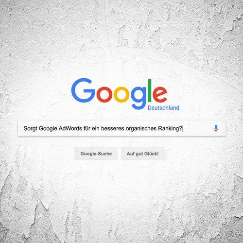 Google Website & Suchfeld